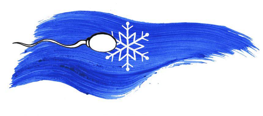 Congelamento del seme