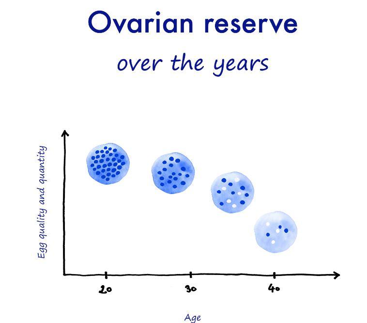 low ovarian reserve hc fertility